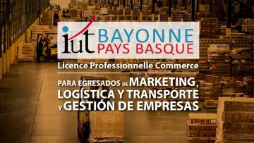 Egresados de Marketing, Gestión de Empresas y Logística pueden continuar sus estudios en una Licence Professionnelle francesa